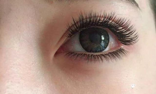 mink eyelash extensionsv